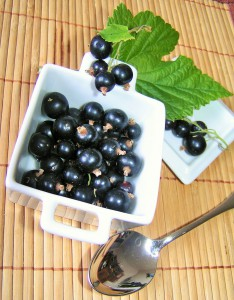 blackcurrants in dish
