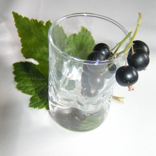 Innovative blackcurrant product competition