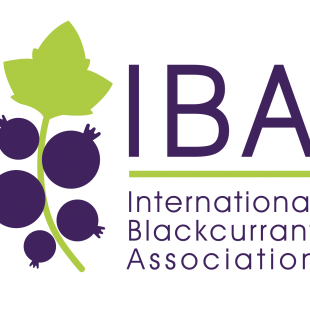 A new logo for the IBA