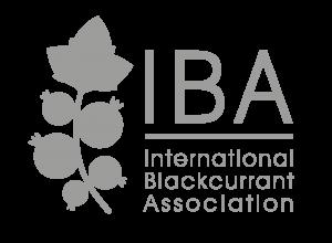logo_iba_gris