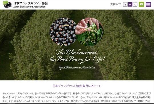 site_jba
