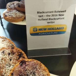 Blackcurrant bakewell tart