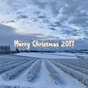 Christmas 2017 message from IBA President Anthony Snell