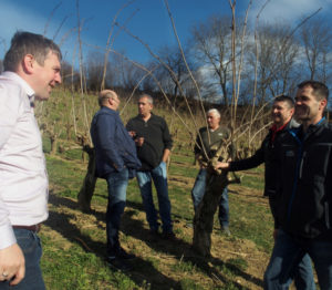 Stefan Lampl (Manager of StBoG) standing in an elderberry plantation with members of the Styrian berry cooperative and IBA Exec members