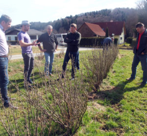 IBA Exec members and StBoG blackcurrant growers standing in a blackcurrant field