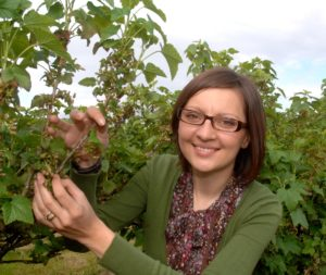 Dr Dorota Jarret close to a blackcurrant bush. She is in charge of a research programme for climate-resilient blackcurrant varieties.